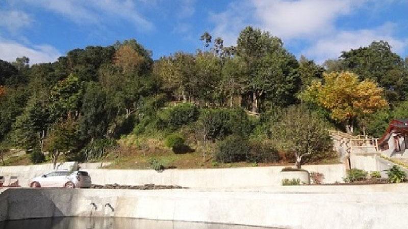 Punta Larga, Frutillar!
