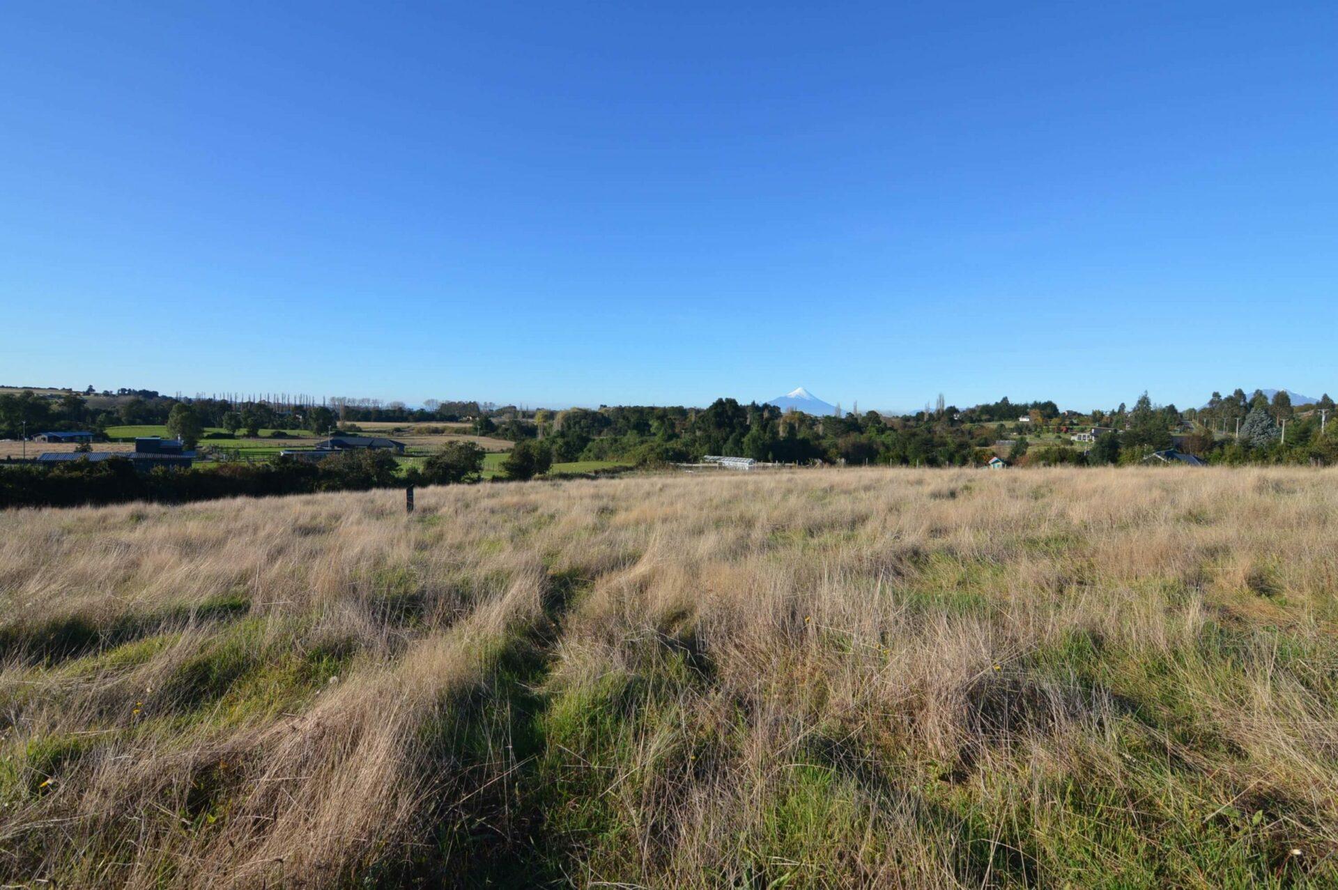 Reserva Santa Clara