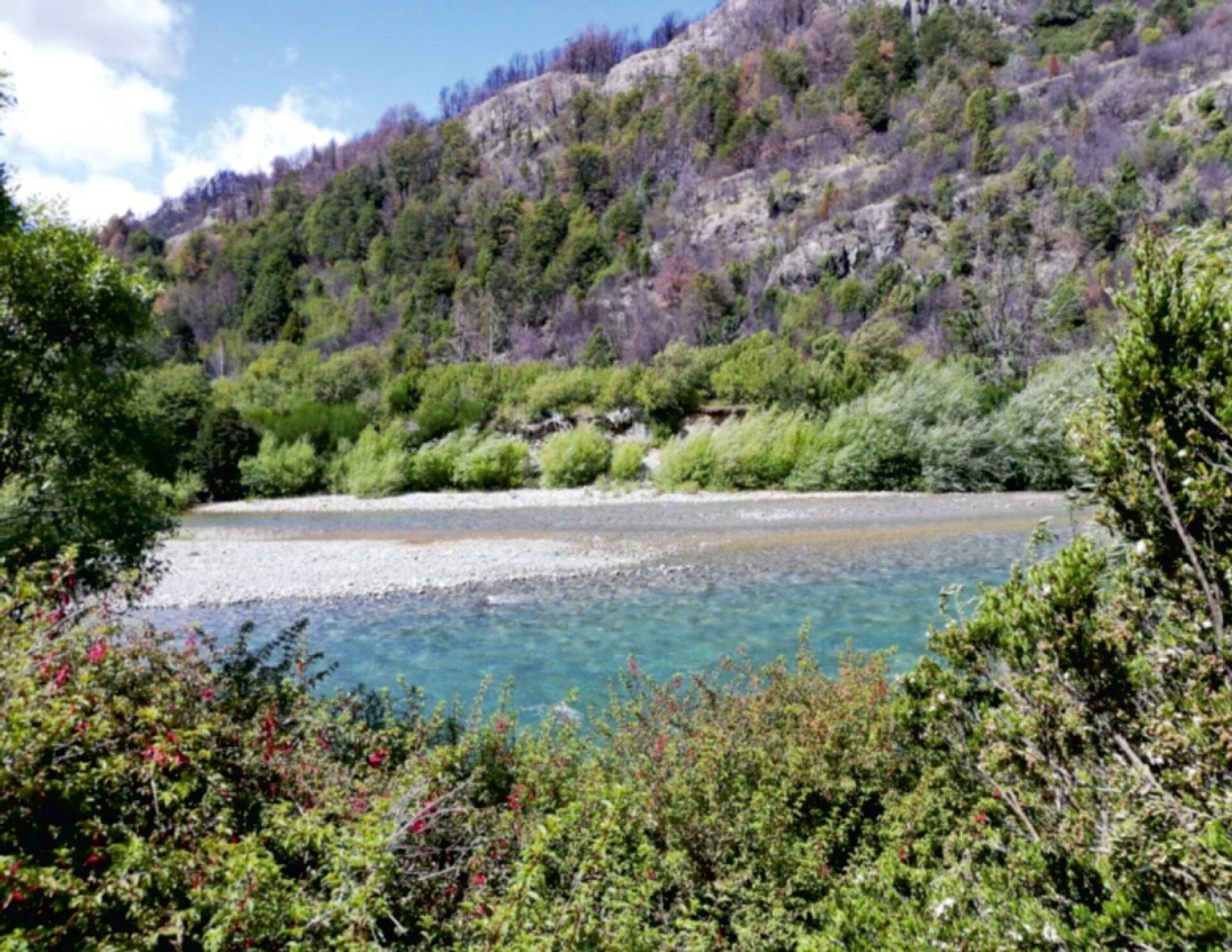 Reserva Futaleufú
