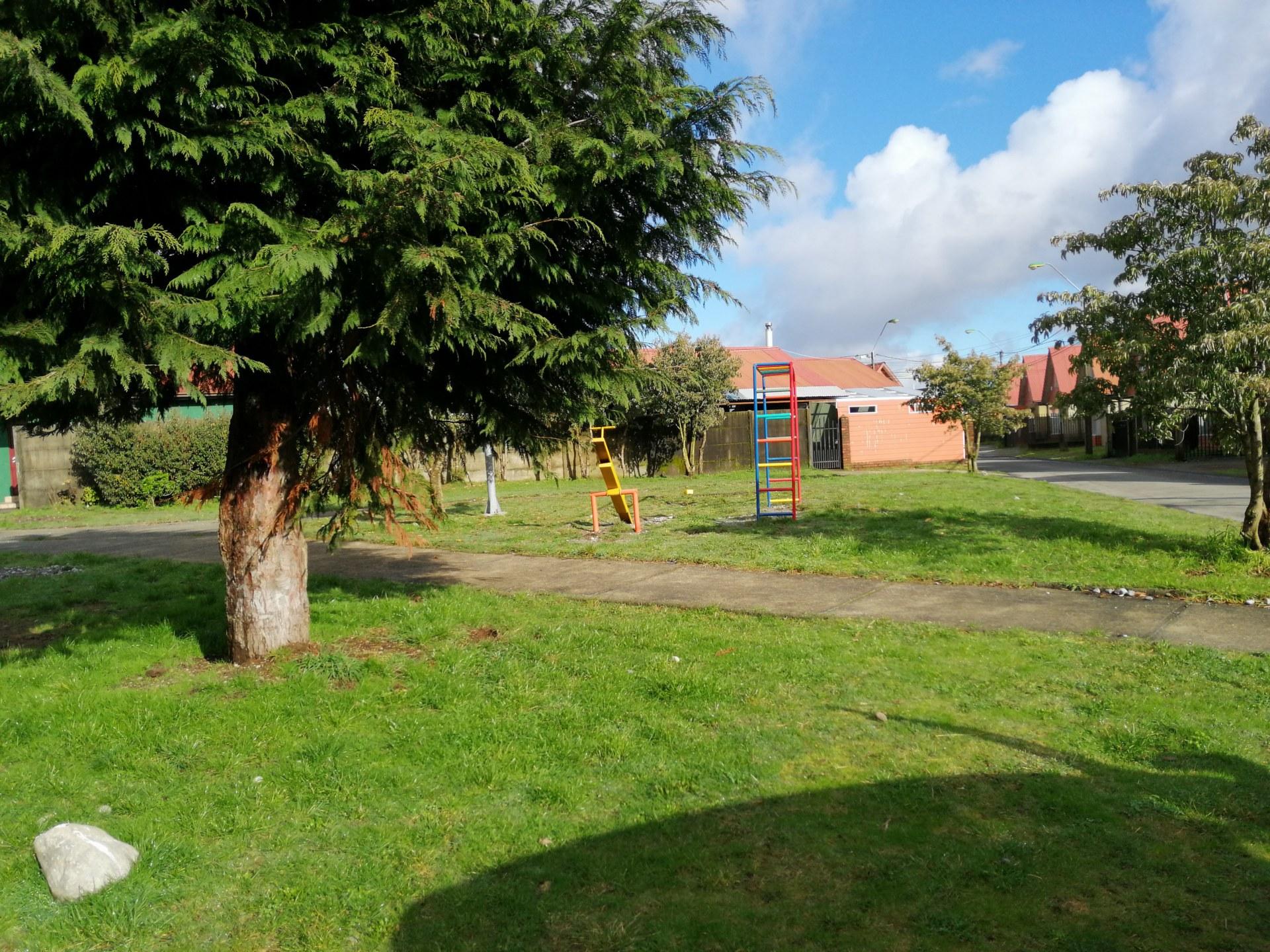 Jardín Austral IV