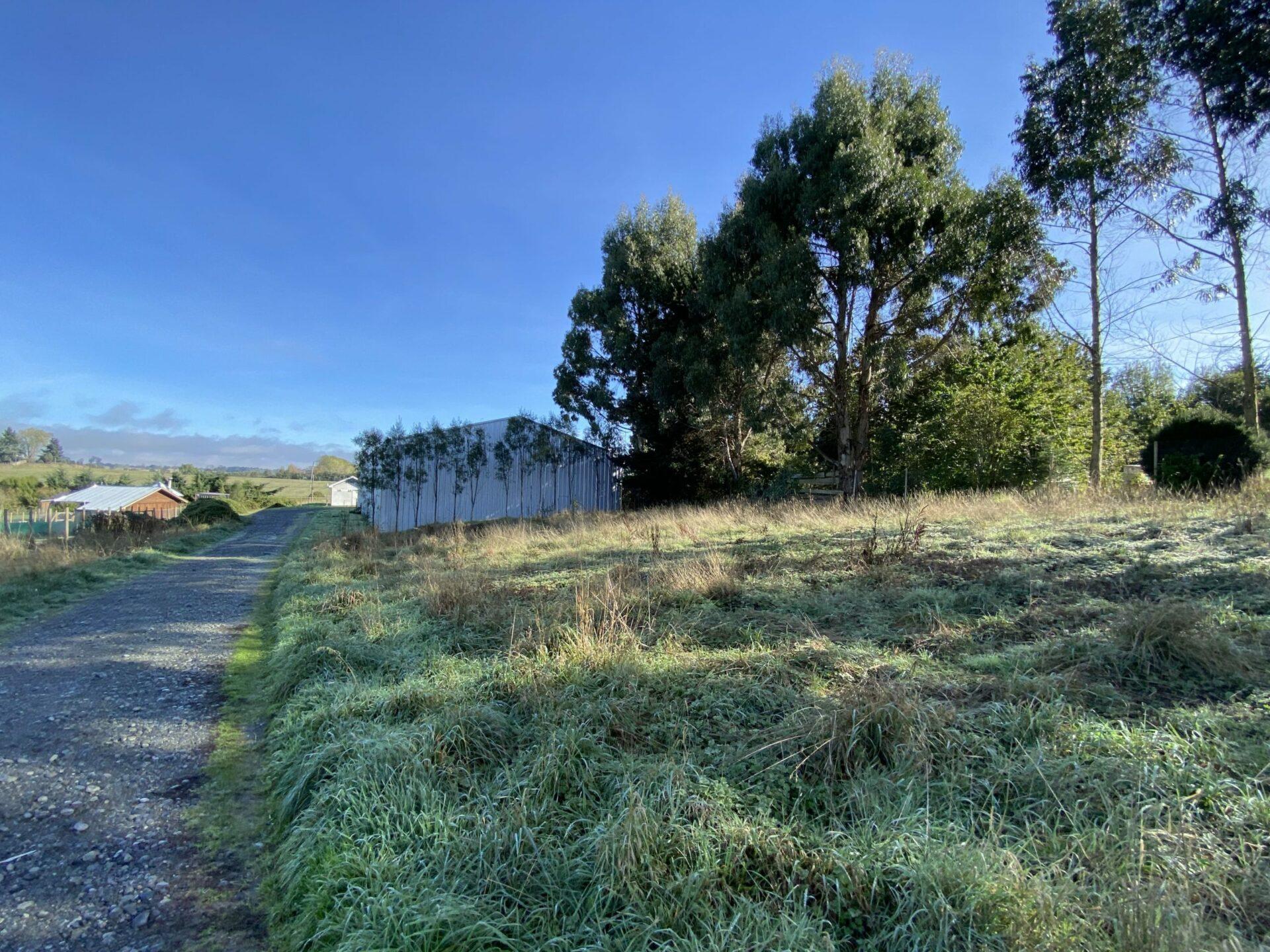 Terreno Industrial, Galpón